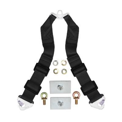 Safety Harness - 6 Point  - Schroth Racing  - Schroth Profi Sub Straps