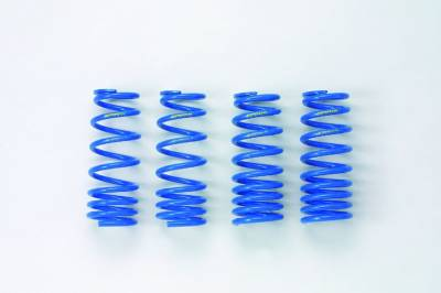 Suspension - Springs - Spoon Sports - Spoon Sports Progressive Spring Honda S2000